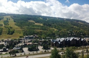 Vail Mountain has signs of the aspen trees starting to change!